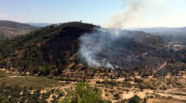 Muğlada yerleşim yerleri yakınında orman yangını