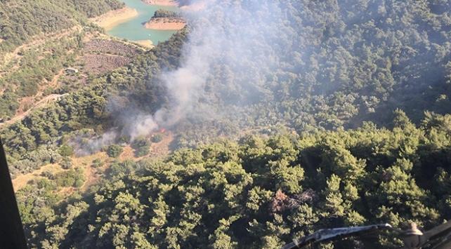 İzmirde çıkan orman yangını kontrol altına alındı
