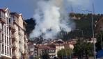 Ankarada ormanlık alanda yangın