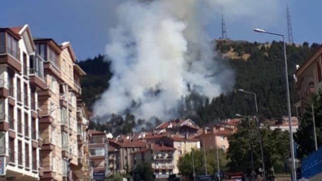 Ankara'da ormanlık alanda yangın