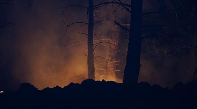 Kazdağlarında orman yangını