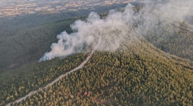 Çanakkalede 2 dönüm ormanlık alan yandı