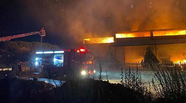 Manisada ahşap fabrikasında yangın çıktı
