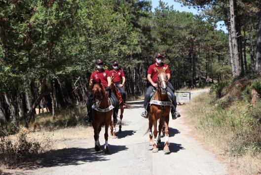 Aydos Ormanında, yangınları önlemeye yönelik denetim yapıldı