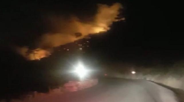 İzmirde çıkan orman yangını kontrol altında