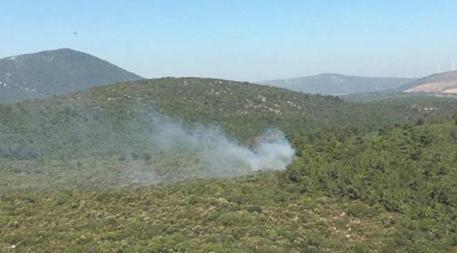 İzmirde orman yangınına müdahale ediliyor