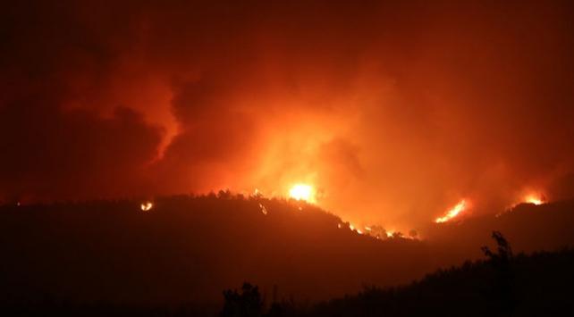 Adanada orman yangını: 6 köy ve 800 hane tahliye edildi