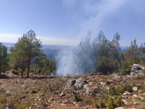 Osmaniyede çıkan orman yangını söndürüldü