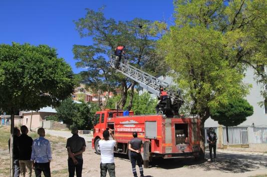 Ağaçta ayağı ipe dolanan kargayı itfaiye ekipleri kurtardı