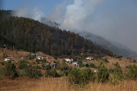 Kastamonuda çıkan orman yangınına müdahale ediliyor