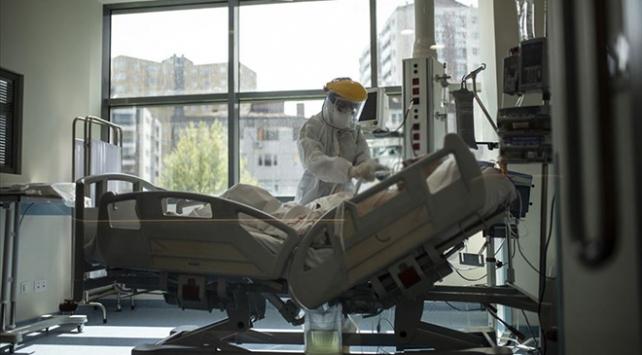 Türk Konseyi Sağlık Bilim Kurulu üyelerinden Türkiyenin koronavirüs mücadelesine övgü