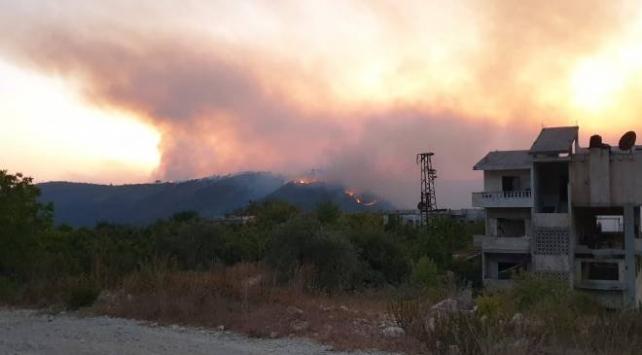 Hatayda ormanlık alandaki yangın söndürüldü