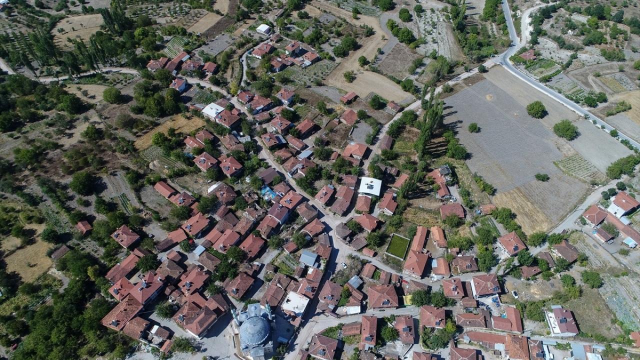 Uludağ`ın güney eteklerinde 60 hanede 265 kişinin yaşadığı mahallede yaklaşık 1000 dönüm araziye ekilen çörek otu, üreticisinin yüzünü güldürdü.