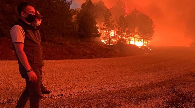 Pakdemirli: Denizli ve Kastamonu yangınları kontrol altında