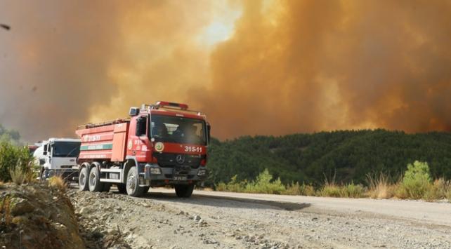 Hatayda çıkan orman yangınında soğutma çalışmaları sürüyor