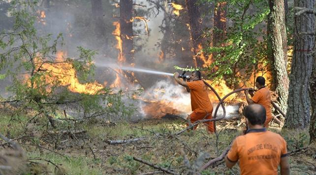 Çorum-Sinop arasındaki yangın büyük ölçüde kontrol altında