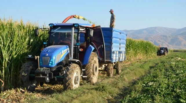 Muşta silajlık mısırdan 27 milyon lira gelir bekleniyor