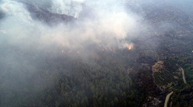 Hatayda 2 gün önce başlayan orman yangını sürüyor