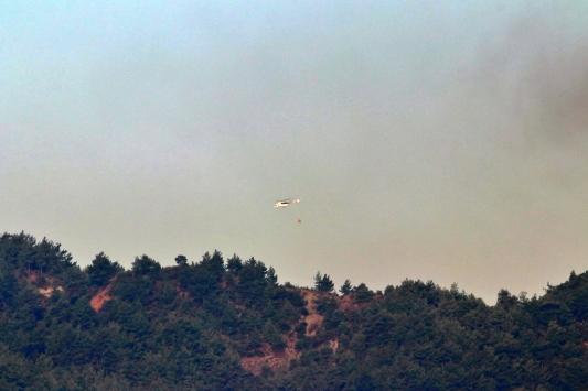 Hataydaki orman yangınına havadan müdahale tekrar başladı