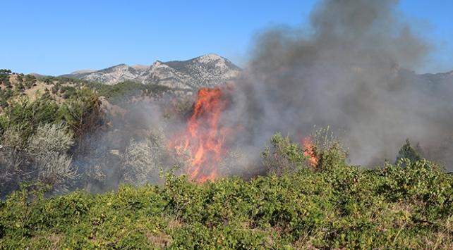 Bakan Pakdemirli: Bugün başlayan 11 orman yangınının 10unu kontrol altına aldık