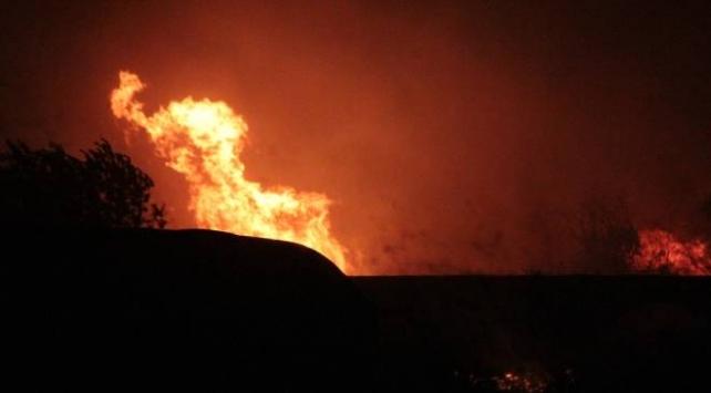 Antalyada otluk alanda yangın