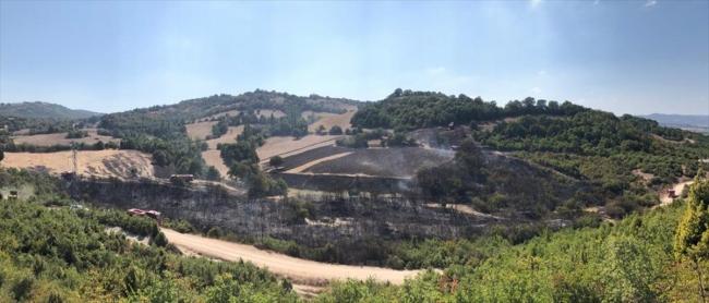 Balıkesirde makilik alanda çıkan yangına müdahale ediliyor