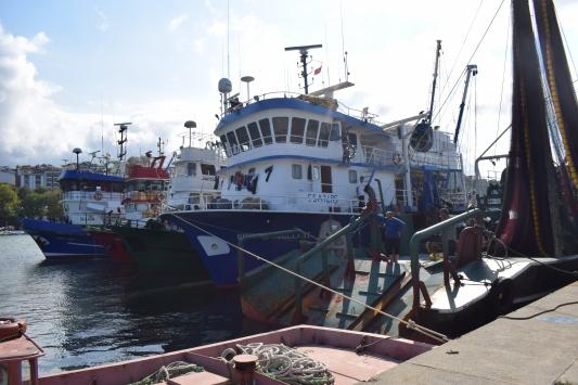 Batı Karadenizde balıkçılar poyraz nedeniyle limana demirledi