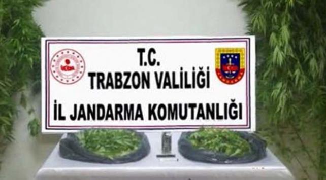 Trabzonda 5 kilo esrar ele geçirildi