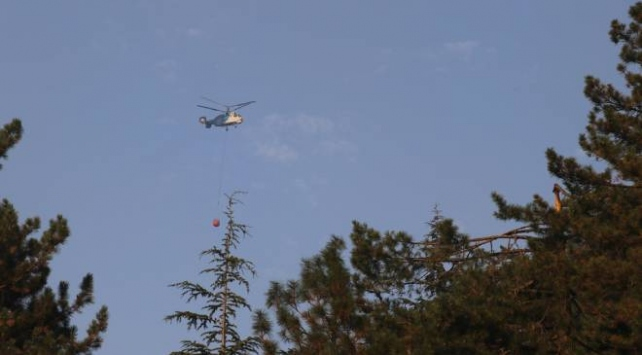 Adanadaki orman yangınına müdahale tekrar başladı