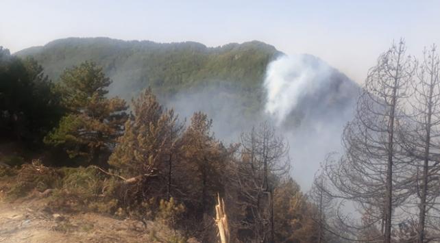 Hataydaki orman yangını kontrol altına alındı