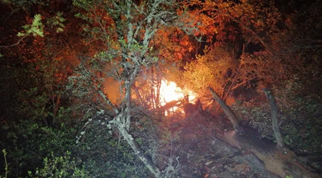Karabükte yıldırımın düştüğü ormanda yangın çıktı