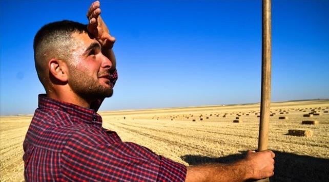 Doğu Anadoluda sıcaklıklar artacak