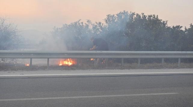 İzmir-Çeşme otoyolunda dumanı gören sürücüler yangın tüplerine sarıldı