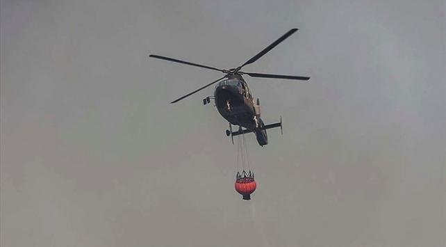 Brezilya yangınlarla mücadele ediyor: 1,5 milyon hektar sulak alan yandı