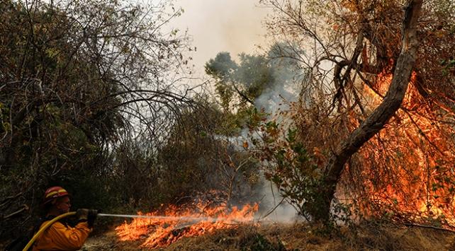 ABDde orman yangınları söndürülemiyor: 33 kişi yaşamını yitirdi