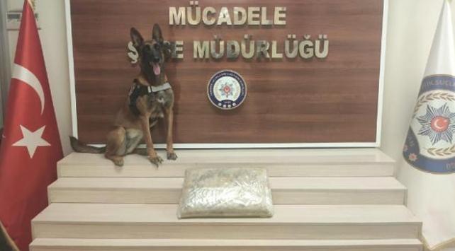 Kargo şirketine operasyon: 10 kilo uyuşturucu ele geçirildi