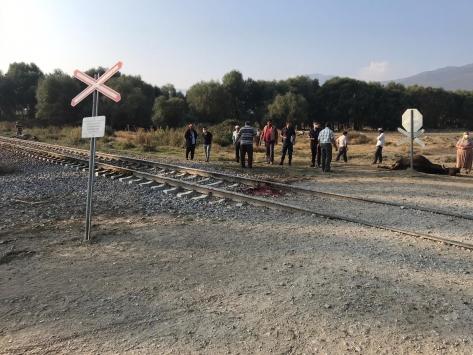 Akşehirde yük treninin çarptığı sürüdeki 8 hayvan telef oldu