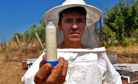 Gramı 700 liradan arı zehri ihraç ediyor