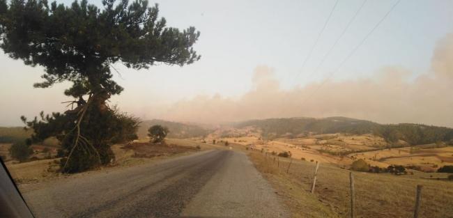Çorumdaki orman yangınını söndürme çalışmaları sürüyor