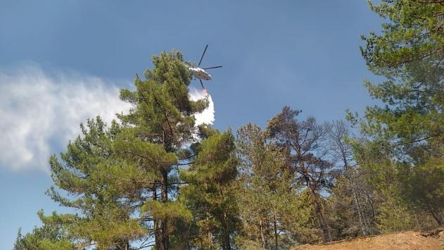 Adanada ormanlık alanda çıkan yangın kontrol altına alındı