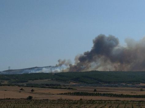 Çanakkalede orman yangınına müdahale ediliyor