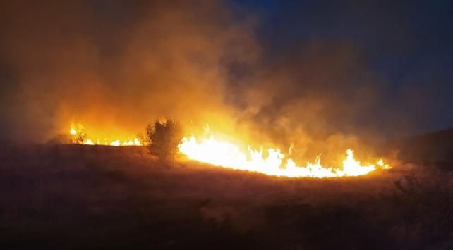 Ankarada orman yangını