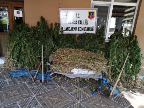 Manisada uyuşturucu operasyonu