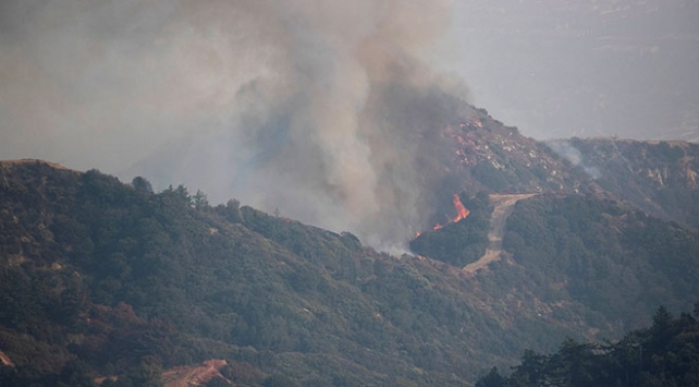 ABDdeki yangının dumanı bu hafta Avrupaya ulaşabilir