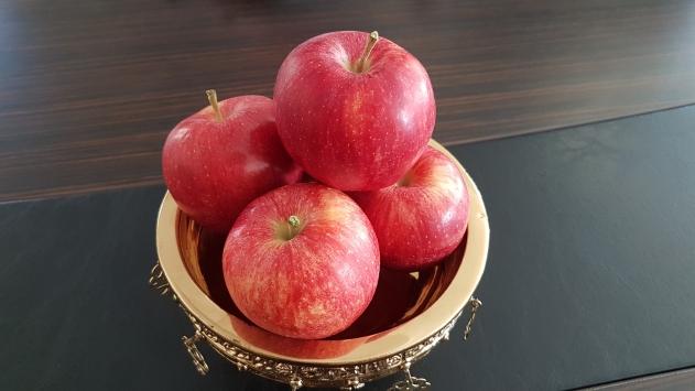 Niğdede üretilen elmanın dünya pazarındaki rekabet gücü artacak