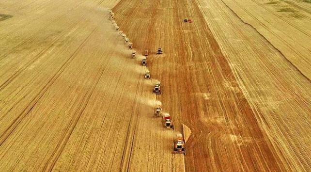 Bankalar tarım sektörüne kredi desteğini artırdı