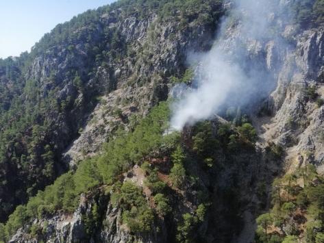 Muğlada çıkan orman yangını kontrol altına alınmaya çalışılıyor