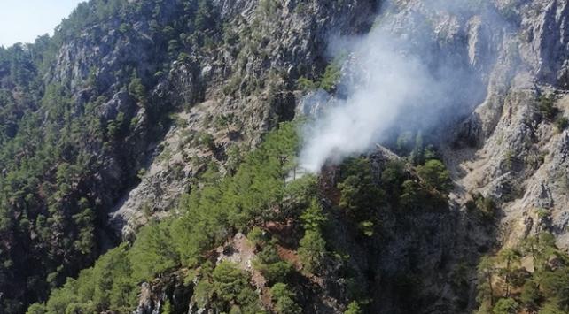 Muğlada ormanlık alanda yangın: Müdahale sürüyor