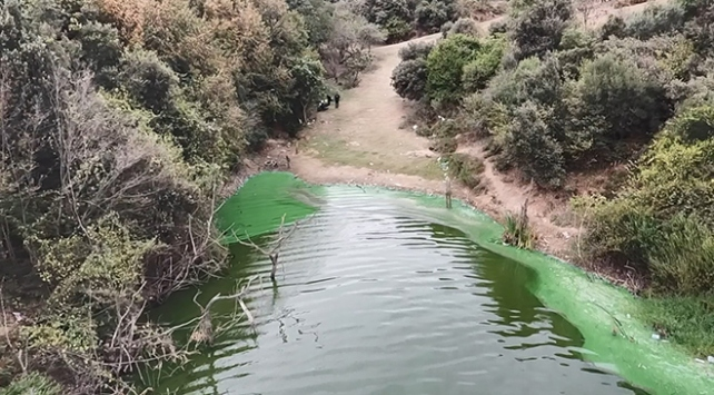 İstanbulda göle kimyasal atık boşalttılar