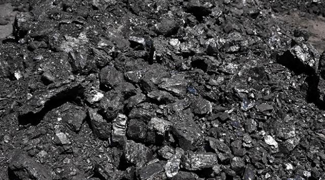Kara elmas 8 ayda 155 milyon lira gelir sağladı